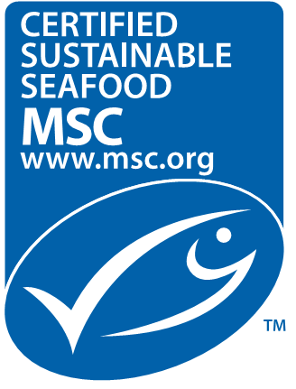 msc logo long