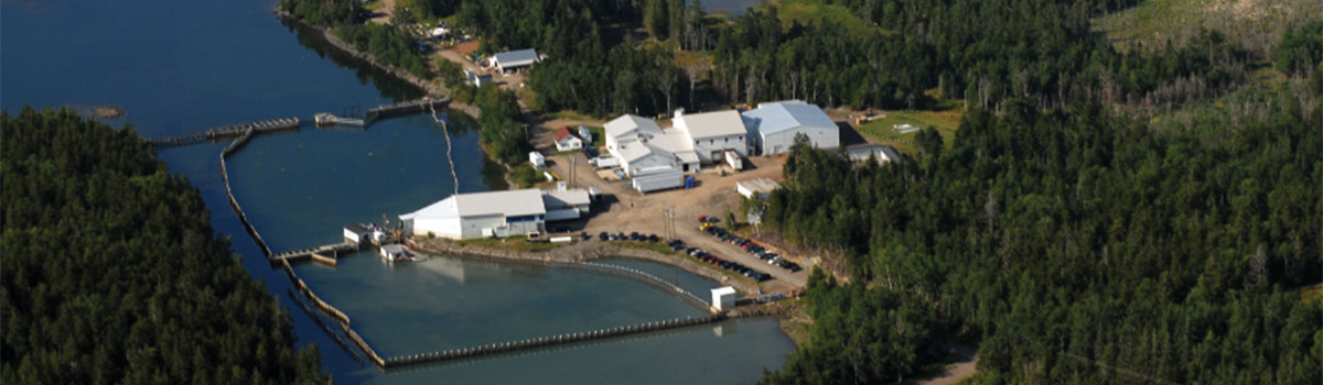 Paturel Facility nestled in the pristine Bay of Fundy